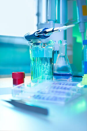 Corista_immunohistochemistry